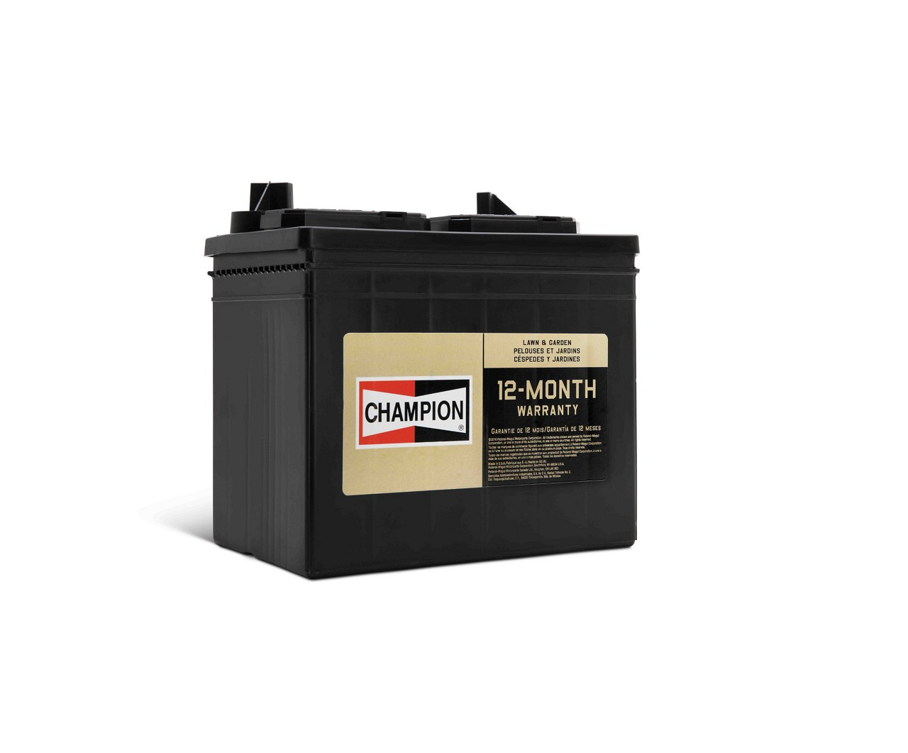 Champion-Lawn-And-Garden-Battery-Low-Res